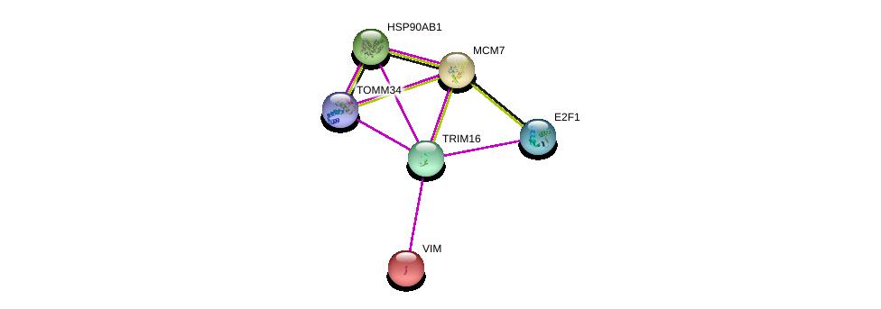 http://string-db.org/version_10/api/image/networkList?limit=0&targetmode=proteins&caller_identity=gene_cards&network_flavor=evidence&identifiers=9606.ENSP00000338989%0d%0a9606.ENSP00000224237%0d%0a9606.ENSP00000345571%0d%0a9606.ENSP00000361900%0d%0a9606.ENSP00000325875%0d%0a9606.ENSP00000307288%0d%0a