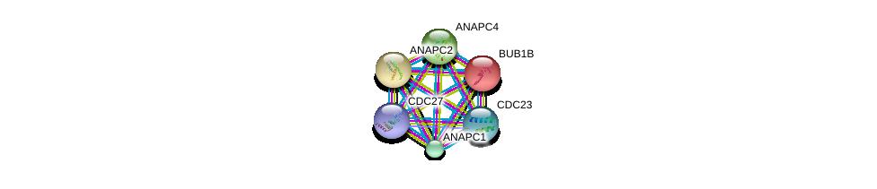 http://string-db.org/version_10/api/image/networkList?limit=0&targetmode=proteins&caller_identity=gene_cards&network_flavor=evidence&identifiers=9606.ENSP00000339109%0d%0a9606.ENSP00000287598%0d%0a9606.ENSP00000314004%0d%0a9606.ENSP00000318775%0d%0a9606.ENSP00000434614%0d%0a9606.ENSP00000378350%0d%0a