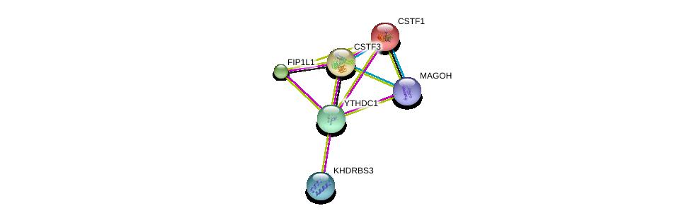 http://string-db.org/version_10/api/image/networkList?limit=0&targetmode=proteins&caller_identity=gene_cards&network_flavor=evidence&identifiers=9606.ENSP00000339245%0d%0a9606.ENSP00000360525%0d%0a9606.ENSP00000348108%0d%0a9606.ENSP00000315791%0d%0a9606.ENSP00000336752%0d%0a9606.ENSP00000217109%0d%0a