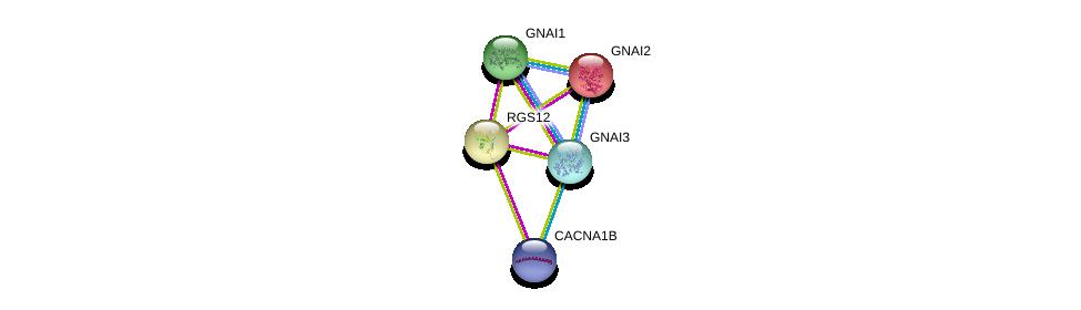 http://string-db.org/version_10/api/image/networkList?limit=0&targetmode=proteins&caller_identity=gene_cards&network_flavor=evidence&identifiers=9606.ENSP00000339381%0d%0a9606.ENSP00000312999%0d%0a9606.ENSP00000343027%0d%0a9606.ENSP00000358867%0d%0a9606.ENSP00000358867%0d%0a9606.ENSP00000360406%0d%0a