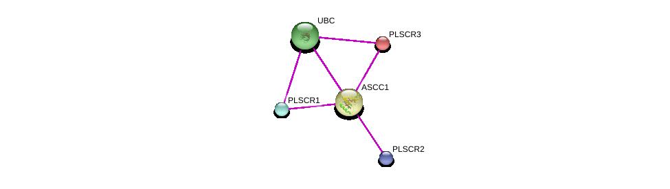 http://string-db.org/version_10/api/image/networkList?limit=0&targetmode=proteins&caller_identity=gene_cards&network_flavor=evidence&identifiers=9606.ENSP00000339404%0d%0a9606.ENSP00000344818%0d%0a9606.ENSP00000420132%0d%0a9606.ENSP00000316021%0d%0a9606.ENSP00000316021%0d%0a9606.ENSP00000345494%0d%0a