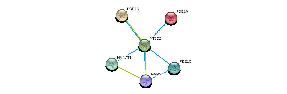 http://string-db.org/version_10/api/image/networkList?limit=0&targetmode=proteins&caller_identity=gene_cards&network_flavor=evidence&identifiers=9606.ENSP00000339479%0d%0a9606.ENSP00000311453%0d%0a9606.ENSP00000379496%0d%0a9606.ENSP00000332116%0d%0a9606.ENSP00000419851%0d%0a9606.ENSP00000366410%0d%0a