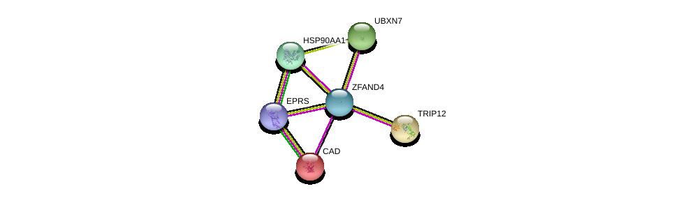 http://string-db.org/version_10/api/image/networkList?limit=0&targetmode=proteins&caller_identity=gene_cards&network_flavor=evidence&identifiers=9606.ENSP00000339484%0d%0a9606.ENSP00000283943%0d%0a9606.ENSP00000296328%0d%0a9606.ENSP00000264705%0d%0a9606.ENSP00000355890%0d%0a9606.ENSP00000335153%0d%0a