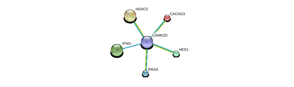 http://string-db.org/version_10/api/image/networkList?limit=0&targetmode=proteins&caller_identity=gene_cards&network_flavor=evidence&identifiers=9606.ENSP00000339740%0d%0a9606.ENSP00000005284%0d%0a9606.ENSP00000225983%0d%0a9606.ENSP00000229135%0d%0a9606.ENSP00000232424%0d%0a9606.ENSP00000246792%0d%0a