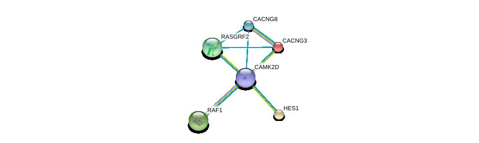 http://string-db.org/version_10/api/image/networkList?limit=0&targetmode=proteins&caller_identity=gene_cards&network_flavor=evidence&identifiers=9606.ENSP00000339740%0d%0a9606.ENSP00000232424%0d%0a9606.ENSP00000251849%0d%0a9606.ENSP00000005284%0d%0a9606.ENSP00000265080%0d%0a9606.ENSP00000270458%0d%0a