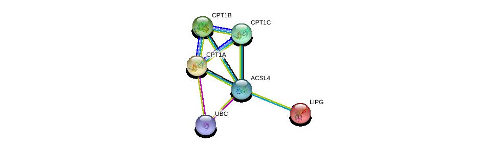 http://string-db.org/version_10/api/image/networkList?limit=0&targetmode=proteins&caller_identity=gene_cards&network_flavor=evidence&identifiers=9606.ENSP00000339787%0d%0a9606.ENSP00000344818%0d%0a9606.ENSP00000312189%0d%0a9606.ENSP00000319343%0d%0a9606.ENSP00000265641%0d%0a9606.ENSP00000261292%0d%0a
