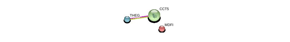 http://string-db.org/version_10/api/image/networkList?limit=0&targetmode=proteins&caller_identity=gene_cards&network_flavor=evidence&identifiers=9606.ENSP00000340088%0d%0a9606.ENSP00000280326%0d%0a9606.ENSP00000230321%0d%0a