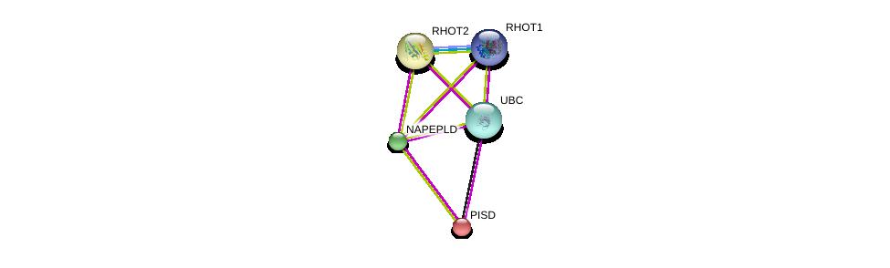 http://string-db.org/version_10/api/image/networkList?limit=0&targetmode=proteins&caller_identity=gene_cards&network_flavor=evidence&identifiers=9606.ENSP00000340093%0d%0a9606.ENSP00000344818%0d%0a9606.ENSP00000266095%0d%0a9606.ENSP00000266095%0d%0a9606.ENSP00000351132%0d%0a9606.ENSP00000321971%0d%0a