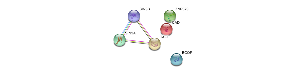 http://string-db.org/version_10/api/image/networkList?limit=0&targetmode=proteins&caller_identity=gene_cards&network_flavor=evidence&identifiers=9606.ENSP00000340171%0d%0a9606.ENSP00000369131%0d%0a9606.ENSP00000353622%0d%0a9606.ENSP00000367705%0d%0a9606.ENSP00000264705%0d%0a9606.ENSP00000276072%0d%0a