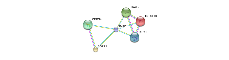 http://string-db.org/version_10/api/image/networkList?limit=0&targetmode=proteins&caller_identity=gene_cards&network_flavor=evidence&identifiers=9606.ENSP00000340409%0d%0a9606.ENSP00000241261%0d%0a9606.ENSP00000247225%0d%0a9606.ENSP00000247668%0d%0a9606.ENSP00000251363%0d%0a9606.ENSP00000259808%0d%0a