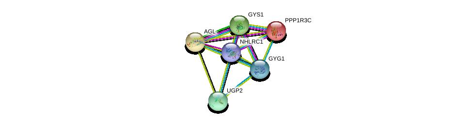 http://string-db.org/version_10/api/image/networkList?limit=0&targetmode=proteins&caller_identity=gene_cards&network_flavor=evidence&identifiers=9606.ENSP00000340736%0d%0a9606.ENSP00000317904%0d%0a9606.ENSP00000345464%0d%0a9606.ENSP00000294724%0d%0a9606.ENSP00000338703%0d%0a9606.ENSP00000238994%0d%0a