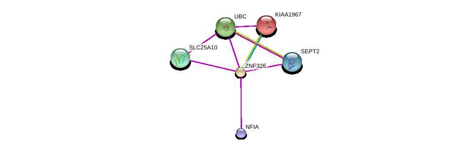 http://string-db.org/version_10/api/image/networkList?limit=0&targetmode=proteins&caller_identity=gene_cards&network_flavor=evidence&identifiers=9606.ENSP00000340796%0d%0a9606.ENSP00000310670%0d%0a9606.ENSP00000344818%0d%0a9606.ENSP00000345580%0d%0a9606.ENSP00000353157%0d%0a9606.ENSP00000360231%0d%0a