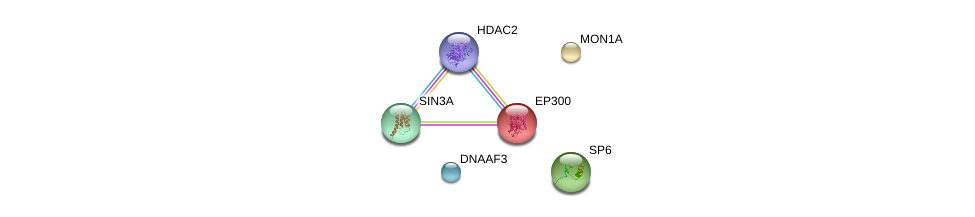 http://string-db.org/version_10/api/image/networkList?limit=0&targetmode=proteins&caller_identity=gene_cards&network_flavor=evidence&identifiers=9606.ENSP00000340799%0d%0a9606.ENSP00000296473%0d%0a9606.ENSP00000375599%0d%0a9606.ENSP00000353622%0d%0a9606.ENSP00000430432%0d%0a9606.ENSP00000263253%0d%0a