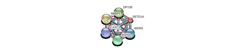 http://string-db.org/version_10/api/image/networkList?limit=0&targetmode=proteins&caller_identity=gene_cards&network_flavor=evidence&identifiers=9606.ENSP00000340896%0d%0a9606.ENSP00000351446%0d%0a9606.ENSP00000390475%0d%0a9606.ENSP00000264515%0d%0a9606.ENSP00000295066%0d%0a9606.ENSP00000262519%0d%0a