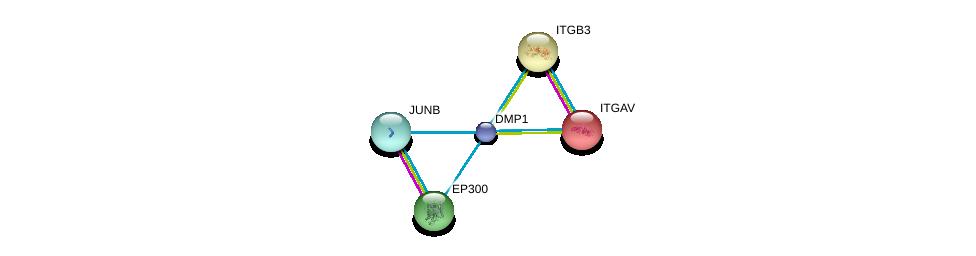 http://string-db.org/version_10/api/image/networkList?limit=0&targetmode=proteins&caller_identity=gene_cards&network_flavor=evidence&identifiers=9606.ENSP00000340935%0d%0a9606.ENSP00000262017%0d%0a9606.ENSP00000261023%0d%0a9606.ENSP00000263253%0d%0a9606.ENSP00000263253%0d%0a9606.ENSP00000303315%0d%0a