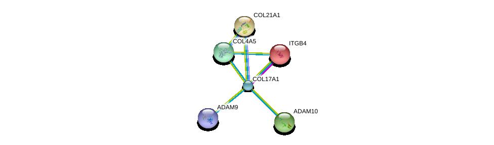 http://string-db.org/version_10/api/image/networkList?limit=0&targetmode=proteins&caller_identity=gene_cards&network_flavor=evidence&identifiers=9606.ENSP00000340937%0d%0a9606.ENSP00000200181%0d%0a9606.ENSP00000244728%0d%0a9606.ENSP00000331902%0d%0a9606.ENSP00000419446%0d%0a9606.ENSP00000260408%0d%0a