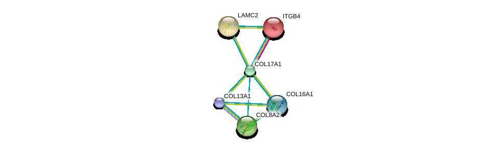 http://string-db.org/version_10/api/image/networkList?limit=0&targetmode=proteins&caller_identity=gene_cards&network_flavor=evidence&identifiers=9606.ENSP00000340937%0d%0a9606.ENSP00000200181%0d%0a9606.ENSP00000305913%0d%0a9606.ENSP00000362776%0d%0a9606.ENSP00000381949%0d%0a9606.ENSP00000264144%0d%0a