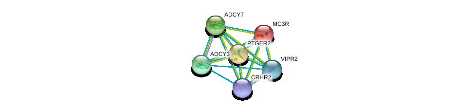 http://string-db.org/version_10/api/image/networkList?limit=0&targetmode=proteins&caller_identity=gene_cards&network_flavor=evidence&identifiers=9606.ENSP00000340943%0d%0a9606.ENSP00000243911%0d%0a9606.ENSP00000245457%0d%0a9606.ENSP00000254235%0d%0a9606.ENSP00000260600%0d%0a9606.ENSP00000262178%0d%0a