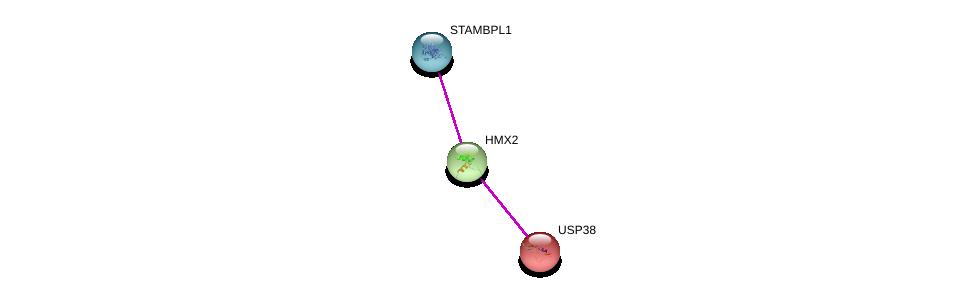 http://string-db.org/version_10/api/image/networkList?limit=0&targetmode=proteins&caller_identity=gene_cards&network_flavor=evidence&identifiers=9606.ENSP00000341108%0d%0a9606.ENSP00000360992%0d%0a9606.ENSP00000303434%0d%0a