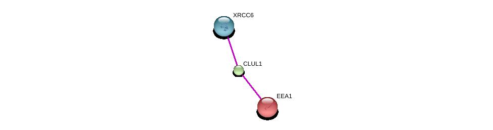 http://string-db.org/version_10/api/image/networkList?limit=0&targetmode=proteins&caller_identity=gene_cards&network_flavor=evidence&identifiers=9606.ENSP00000341128%0d%0a9606.ENSP00000352257%0d%0a9606.ENSP00000317955%0d%0a