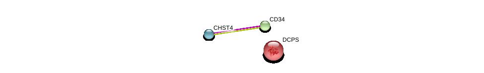 http://string-db.org/version_10/api/image/networkList?limit=0&targetmode=proteins&caller_identity=gene_cards&network_flavor=evidence&identifiers=9606.ENSP00000341206%0d%0a9606.ENSP00000310036%0d%0a9606.ENSP00000263579%0d%0a