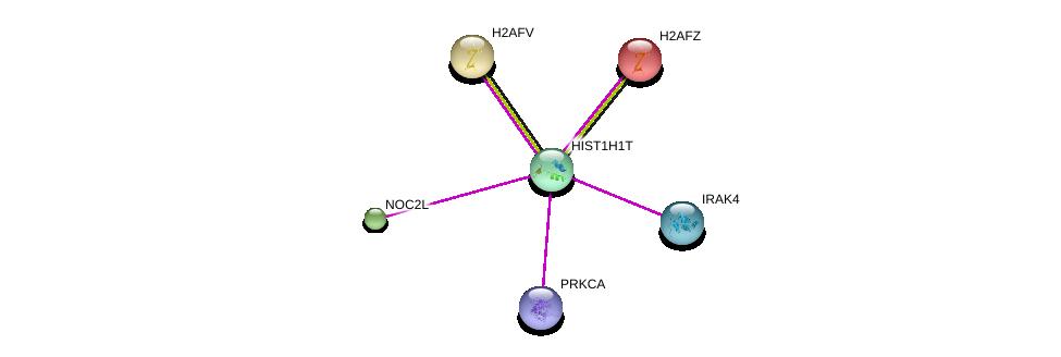 http://string-db.org/version_10/api/image/networkList?limit=0&targetmode=proteins&caller_identity=gene_cards&network_flavor=evidence&identifiers=9606.ENSP00000341214%0d%0a9606.ENSP00000308405%0d%0a9606.ENSP00000296417%0d%0a9606.ENSP00000317992%0d%0a9606.ENSP00000408695%0d%0a9606.ENSP00000390651%0d%0a