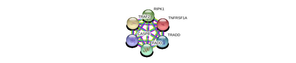 http://string-db.org/version_10/api/image/networkList?limit=0&targetmode=proteins&caller_identity=gene_cards&network_flavor=evidence&identifiers=9606.ENSP00000341268%0d%0a9606.ENSP00000162749%0d%0a9606.ENSP00000247668%0d%0a9606.ENSP00000301838%0d%0a9606.ENSP00000351273%0d%0a9606.ENSP00000259808%0d%0a