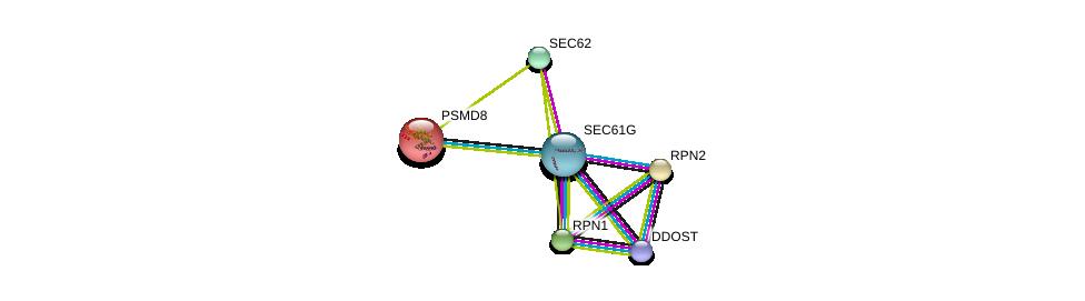 http://string-db.org/version_10/api/image/networkList?limit=0&targetmode=proteins&caller_identity=gene_cards&network_flavor=evidence&identifiers=9606.ENSP00000341538%0d%0a9606.ENSP00000237530%0d%0a9606.ENSP00000296255%0d%0a9606.ENSP00000364188%0d%0a9606.ENSP00000337688%0d%0a9606.ENSP00000215071%0d%0a