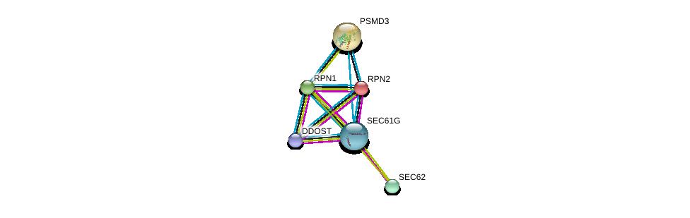 http://string-db.org/version_10/api/image/networkList?limit=0&targetmode=proteins&caller_identity=gene_cards&network_flavor=evidence&identifiers=9606.ENSP00000341538%0d%0a9606.ENSP00000237530%0d%0a9606.ENSP00000296255%0d%0a9606.ENSP00000364188%0d%0a9606.ENSP00000337688%0d%0a9606.ENSP00000264639%0d%0a
