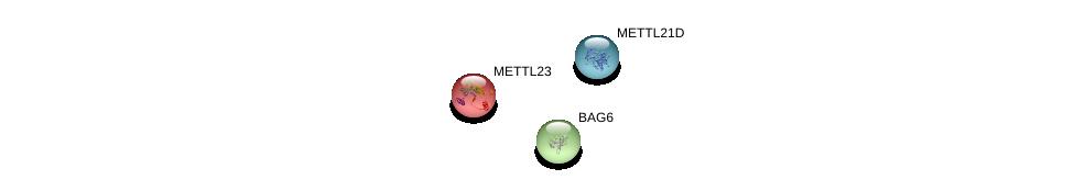 http://string-db.org/version_10/api/image/networkList?limit=0&targetmode=proteins&caller_identity=gene_cards&network_flavor=evidence&identifiers=9606.ENSP00000341543%0d%0a9606.ENSP00000379201%0d%0a9606.ENSP00000365131%0d%0a