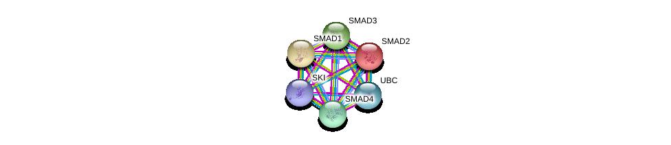 http://string-db.org/version_10/api/image/networkList?limit=0&targetmode=proteins&caller_identity=gene_cards&network_flavor=evidence&identifiers=9606.ENSP00000341551%0d%0a9606.ENSP00000262160%0d%0a9606.ENSP00000305769%0d%0a9606.ENSP00000332973%0d%0a9606.ENSP00000344818%0d%0a9606.ENSP00000367797%0d%0a