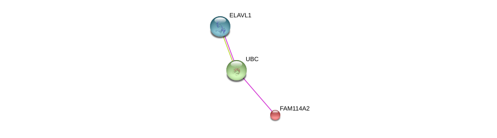 http://string-db.org/version_10/api/image/networkList?limit=0&targetmode=proteins&caller_identity=gene_cards&network_flavor=evidence&identifiers=9606.ENSP00000341597%0d%0a9606.ENSP00000344818%0d%0a9606.ENSP00000385269%0d%0a