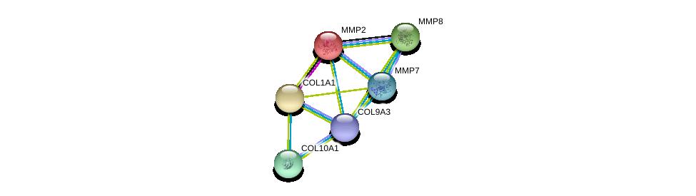 http://string-db.org/version_10/api/image/networkList?limit=0&targetmode=proteins&caller_identity=gene_cards&network_flavor=evidence&identifiers=9606.ENSP00000341640%0d%0a9606.ENSP00000219070%0d%0a9606.ENSP00000225964%0d%0a9606.ENSP00000236826%0d%0a9606.ENSP00000243222%0d%0a9606.ENSP00000260227%0d%0a