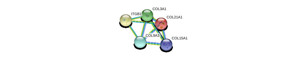 http://string-db.org/version_10/api/image/networkList?limit=0&targetmode=proteins&caller_identity=gene_cards&network_flavor=evidence&identifiers=9606.ENSP00000341640%0d%0a9606.ENSP00000364140%0d%0a9606.ENSP00000304408%0d%0a9606.ENSP00000304408%0d%0a9606.ENSP00000303351%0d%0a9606.ENSP00000244728%0d%0a