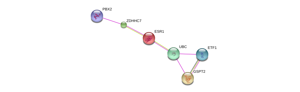 http://string-db.org/version_10/api/image/networkList?limit=0&targetmode=proteins&caller_identity=gene_cards&network_flavor=evidence&identifiers=9606.ENSP00000341681%0d%0a9606.ENSP00000364190%0d%0a9606.ENSP00000206249%0d%0a9606.ENSP00000344818%0d%0a9606.ENSP00000353741%0d%0a9606.ENSP00000341247%0d%0a