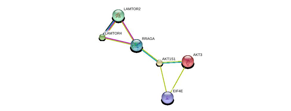 http://string-db.org/version_10/api/image/networkList?limit=0&targetmode=proteins&caller_identity=gene_cards&network_flavor=evidence&identifiers=9606.ENSP00000341698%0d%0a9606.ENSP00000357288%0d%0a9606.ENSP00000343118%0d%0a9606.ENSP00000263826%0d%0a9606.ENSP00000425561%0d%0a9606.ENSP00000369899%0d%0a