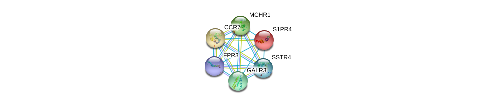 http://string-db.org/version_10/api/image/networkList?limit=0&targetmode=proteins&caller_identity=gene_cards&network_flavor=evidence&identifiers=9606.ENSP00000341821%0d%0a9606.ENSP00000246115%0d%0a9606.ENSP00000246657%0d%0a9606.ENSP00000249016%0d%0a9606.ENSP00000249041%0d%0a9606.ENSP00000255008%0d%0a