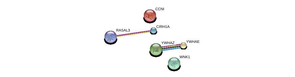 http://string-db.org/version_10/api/image/networkList?limit=0&targetmode=proteins&caller_identity=gene_cards&network_flavor=evidence&identifiers=9606.ENSP00000341905%0d%0a9606.ENSP00000327179%0d%0a9606.ENSP00000309503%0d%0a9606.ENSP00000313059%0d%0a9606.ENSP00000264335%0d%0a9606.ENSP00000237654%0d%0a