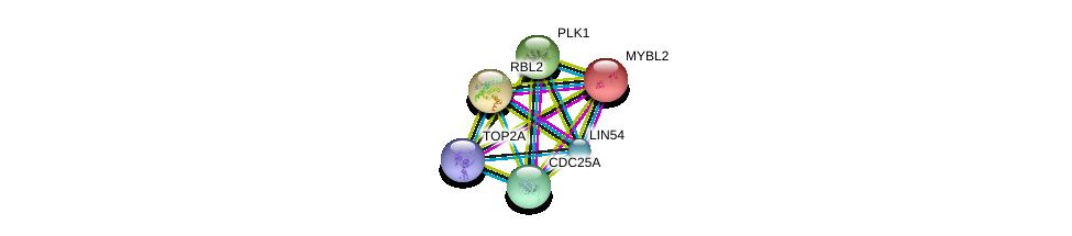 http://string-db.org/version_10/api/image/networkList?limit=0&targetmode=proteins&caller_identity=gene_cards&network_flavor=evidence&identifiers=9606.ENSP00000341947%0d%0a9606.ENSP00000217026%0d%0a9606.ENSP00000262133%0d%0a9606.ENSP00000303706%0d%0a9606.ENSP00000300093%0d%0a9606.ENSP00000411532%0d%0a