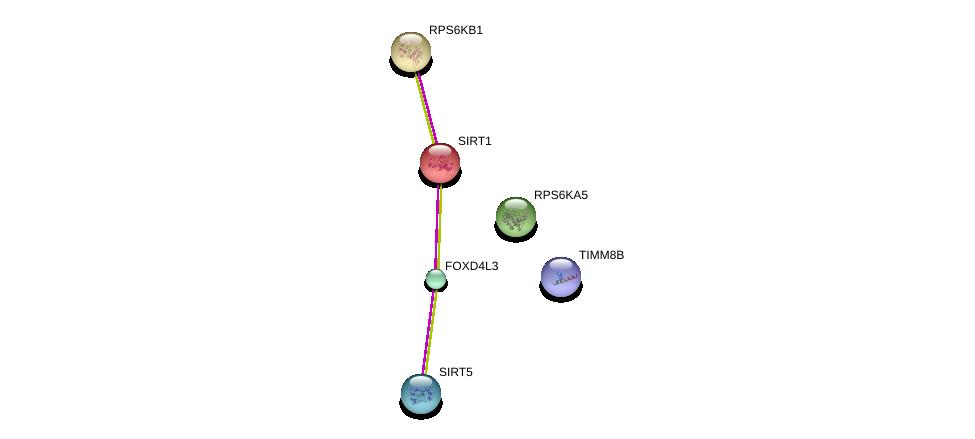 http://string-db.org/version_10/api/image/networkList?limit=0&targetmode=proteins&caller_identity=gene_cards&network_flavor=evidence&identifiers=9606.ENSP00000341961%0d%0a9606.ENSP00000212015%0d%0a9606.ENSP00000368552%0d%0a9606.ENSP00000438455%0d%0a9606.ENSP00000225577%0d%0a9606.ENSP00000261991%0d%0a