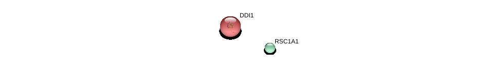 http://string-db.org/version_10/api/image/networkList?limit=0&targetmode=proteins&caller_identity=gene_cards&network_flavor=evidence&identifiers=9606.ENSP00000341963%0d%0a9606.ENSP00000302805%0d%0a