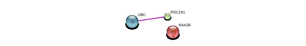 http://string-db.org/version_10/api/image/networkList?limit=0&targetmode=proteins&caller_identity=gene_cards&network_flavor=evidence&identifiers=9606.ENSP00000341963%0d%0a9606.ENSP00000344818%0d%0a9606.ENSP00000249299%0d%0a