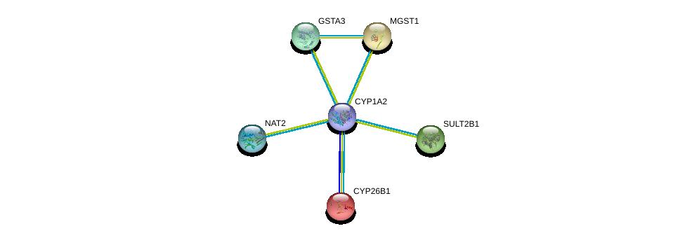 http://string-db.org/version_10/api/image/networkList?limit=0&targetmode=proteins&caller_identity=gene_cards&network_flavor=evidence&identifiers=9606.ENSP00000342007%0d%0a9606.ENSP00000286479%0d%0a9606.ENSP00000001146%0d%0a9606.ENSP00000010404%0d%0a9606.ENSP00000201586%0d%0a9606.ENSP00000211122%0d%0a