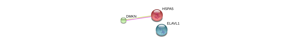 http://string-db.org/version_10/api/image/networkList?limit=0&targetmode=proteins&caller_identity=gene_cards&network_flavor=evidence&identifiers=9606.ENSP00000342012%0d%0a9606.ENSP00000324173%0d%0a9606.ENSP00000385269%0d%0a