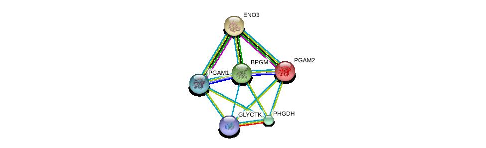 http://string-db.org/version_10/api/image/networkList?limit=0&targetmode=proteins&caller_identity=gene_cards&network_flavor=evidence&identifiers=9606.ENSP00000342032%0d%0a9606.ENSP00000297283%0d%0a9606.ENSP00000324105%0d%0a9606.ENSP00000358417%0d%0a9606.ENSP00000359991%0d%0a9606.ENSP00000389175%0d%0a