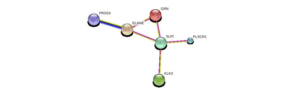 http://string-db.org/version_10/api/image/networkList?limit=0&targetmode=proteins&caller_identity=gene_cards&network_flavor=evidence&identifiers=9606.ENSP00000342082%0d%0a9606.ENSP00000263621%0d%0a9606.ENSP00000314151%0d%0a9606.ENSP00000354280%0d%0a9606.ENSP00000053867%0d%0a9606.ENSP00000345494%0d%0a