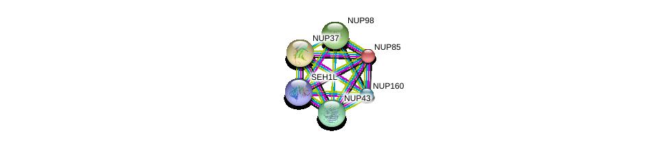 http://string-db.org/version_10/api/image/networkList?limit=0&targetmode=proteins&caller_identity=gene_cards&network_flavor=evidence&identifiers=9606.ENSP00000342262%0d%0a9606.ENSP00000367721%0d%0a9606.ENSP00000245544%0d%0a9606.ENSP00000251074%0d%0a9606.ENSP00000316032%0d%0a9606.ENSP00000382779%0d%0a