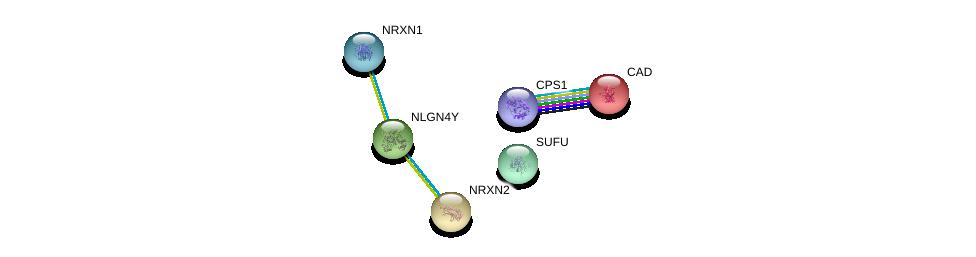 http://string-db.org/version_10/api/image/networkList?limit=0&targetmode=proteins&caller_identity=gene_cards&network_flavor=evidence&identifiers=9606.ENSP00000342535%0d%0a9606.ENSP00000385142%0d%0a9606.ENSP00000265459%0d%0a9606.ENSP00000264705%0d%0a9606.ENSP00000402608%0d%0a9606.ENSP00000358918%0d%0a