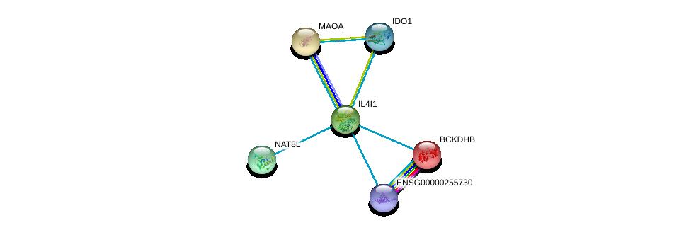 http://string-db.org/version_10/api/image/networkList?limit=0&targetmode=proteins&caller_identity=gene_cards&network_flavor=evidence&identifiers=9606.ENSP00000342557%0d%0a9606.ENSP00000318351%0d%0a9606.ENSP00000340684%0d%0a9606.ENSP00000413064%0d%0a9606.ENSP00000430505%0d%0a9606.ENSP00000443246%0d%0a