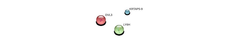 http://string-db.org/version_10/api/image/networkList?limit=0&targetmode=proteins&caller_identity=gene_cards&network_flavor=evidence&identifiers=9606.ENSP00000342711%0d%0a9606.ENSP00000431443%0d%0a9606.ENSP00000316054%0d%0a